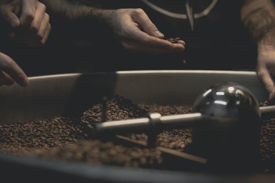 Kahve Kavurma Aşamaları: Kahve Kavurucu